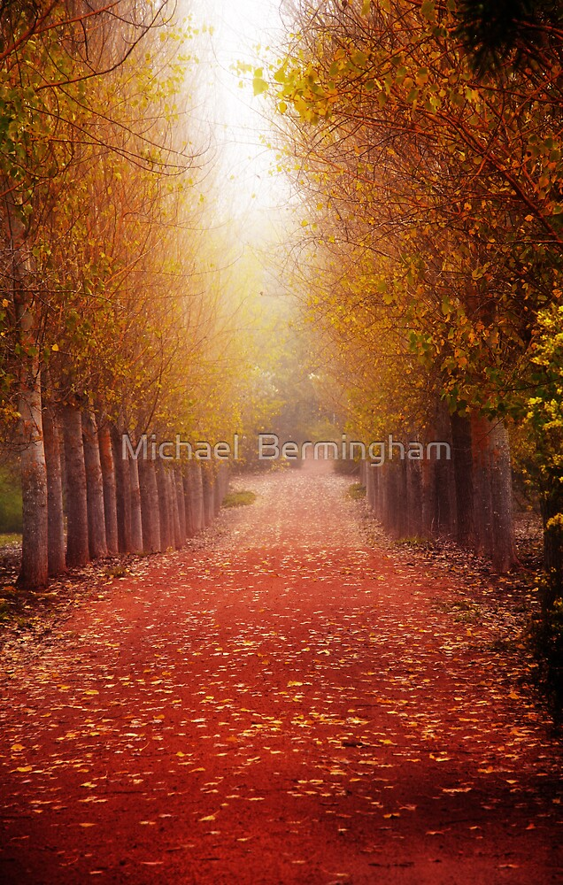 Welcome Home. by Michael  Bermingham