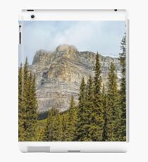 Banff's Castle Mountain iPad Case/Skin