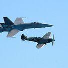 Spitfire, F18 Hornet by Debbie Stobbart