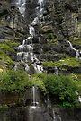 Tumbling Falls by Jan Cartwright