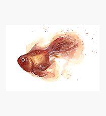 Watercolor Goldfish Photographic Print