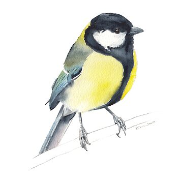 Great tit watercolour by E-M-Wood