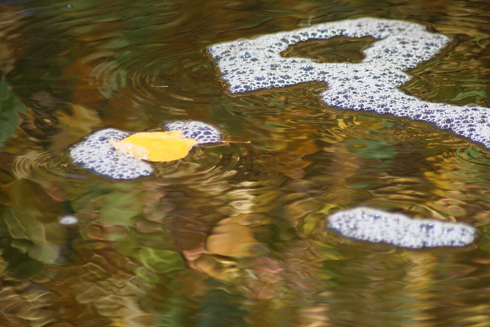liquid pond painting by Marilylle  Soveran