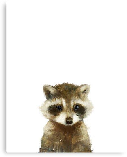 Little Raccoon by Amy Hamilton