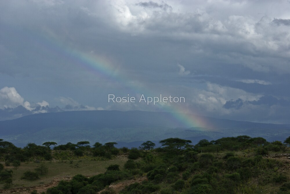 Olduvai Rainbow by Rosie Appleton