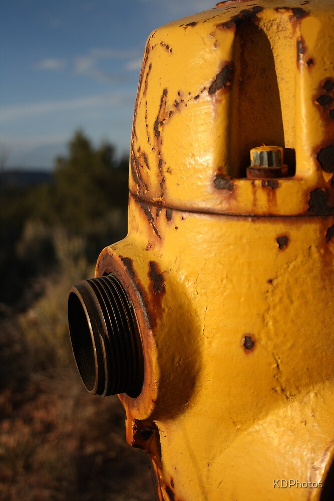 Yellow hydrant by KDPhotos