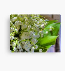 Lilies of the valley 2 Canvas Print