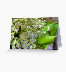 Lilies of the valley 2 Greeting Card