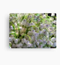 Lilies of the valley 6 Canvas Print