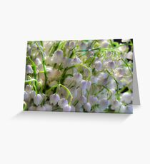 Lilies of the valley 6 Greeting Card