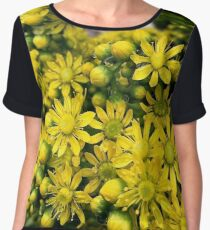 Aeonium flowers in closeup Chiffon Top
