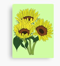 Sunflowers - Sunny Gardens Canvas Print
