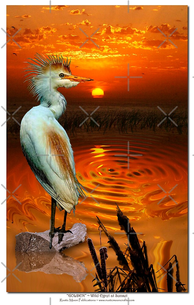 Golden ~ (Egret) by Skye Ryan-Evans