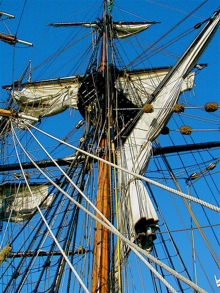 Sails, Ropes and Rigging  by Ray4cam