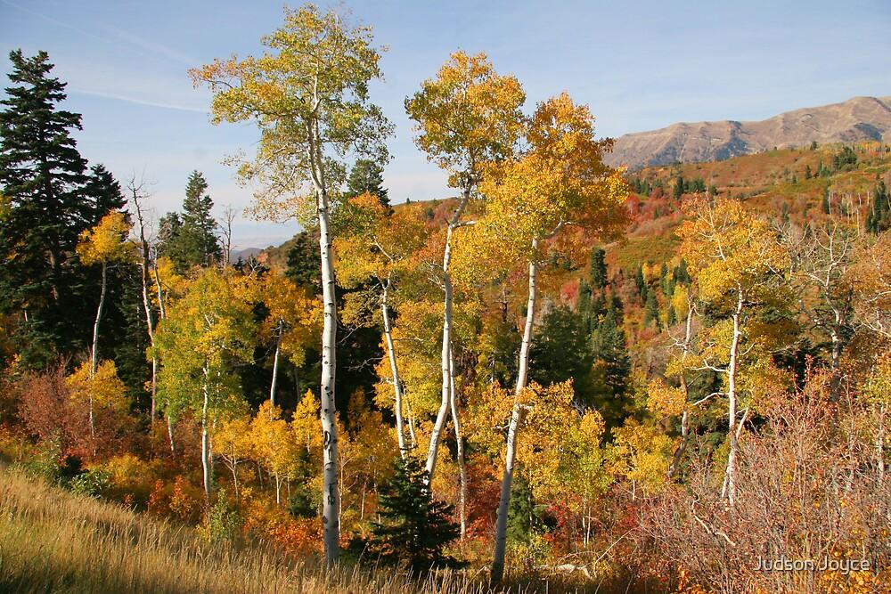 Autumn in Utah by Judson Joyce