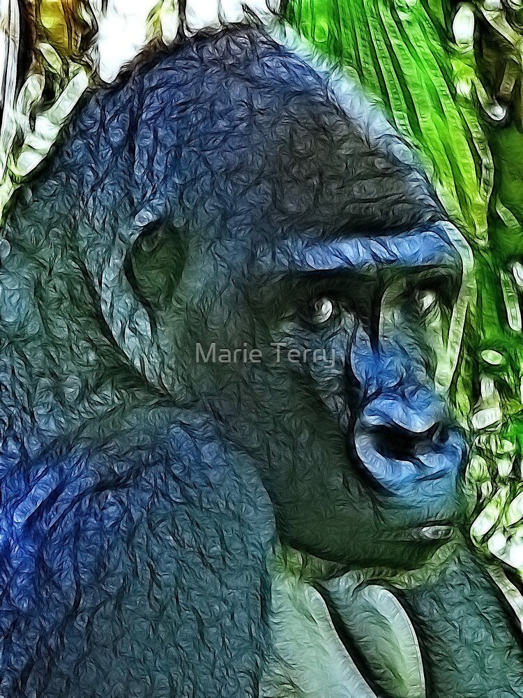 Gorilla Thoughts by Marie Terry