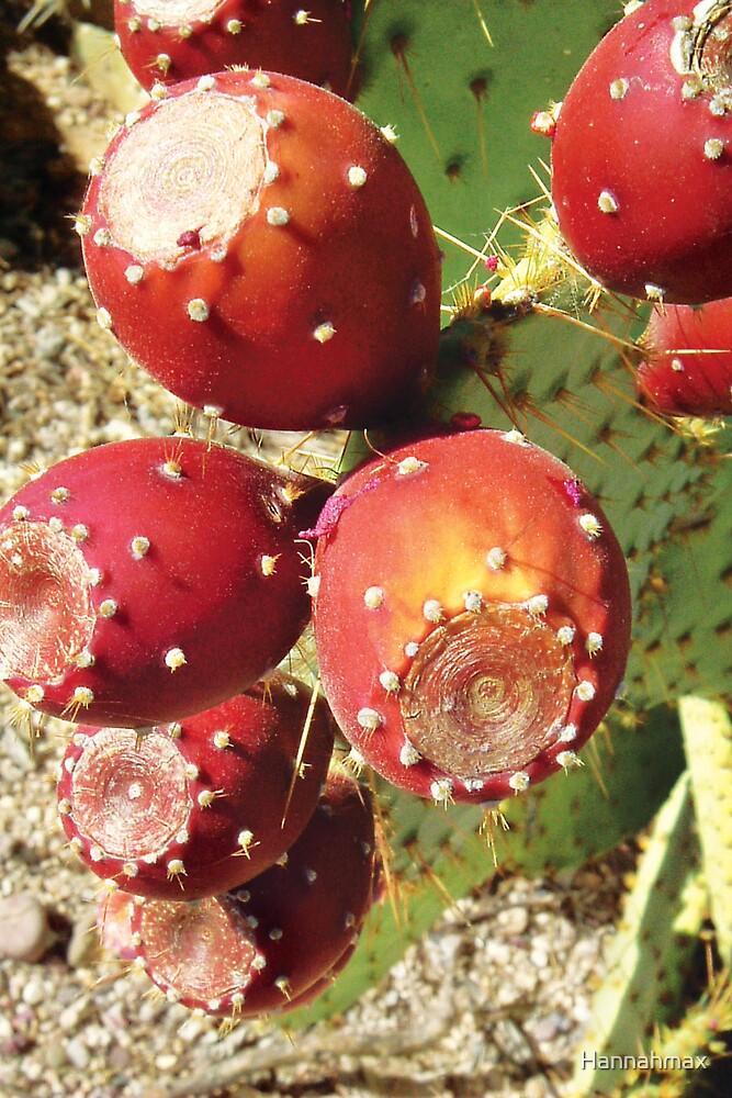 Prickly Pear Fruit by Hannahmax
