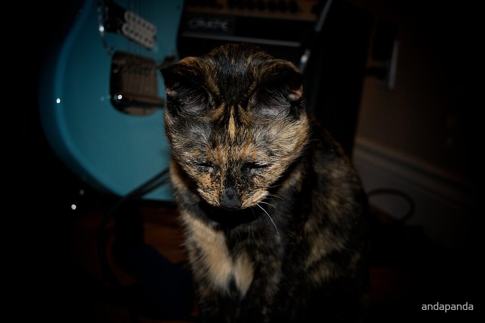 Princess ponders her next song by andapanda
