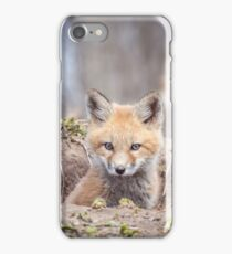 Kit Fox 2011-3 iPhone Case/Skin