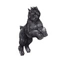 Bouvier des Flandres by Charlotte Yealey