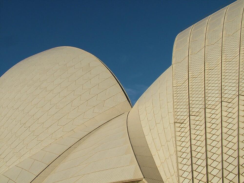 The Opera House 2 by Fiona Moran