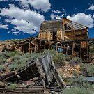Old Gold Mine by photosbyflood