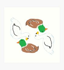 Waterfowl Art Print