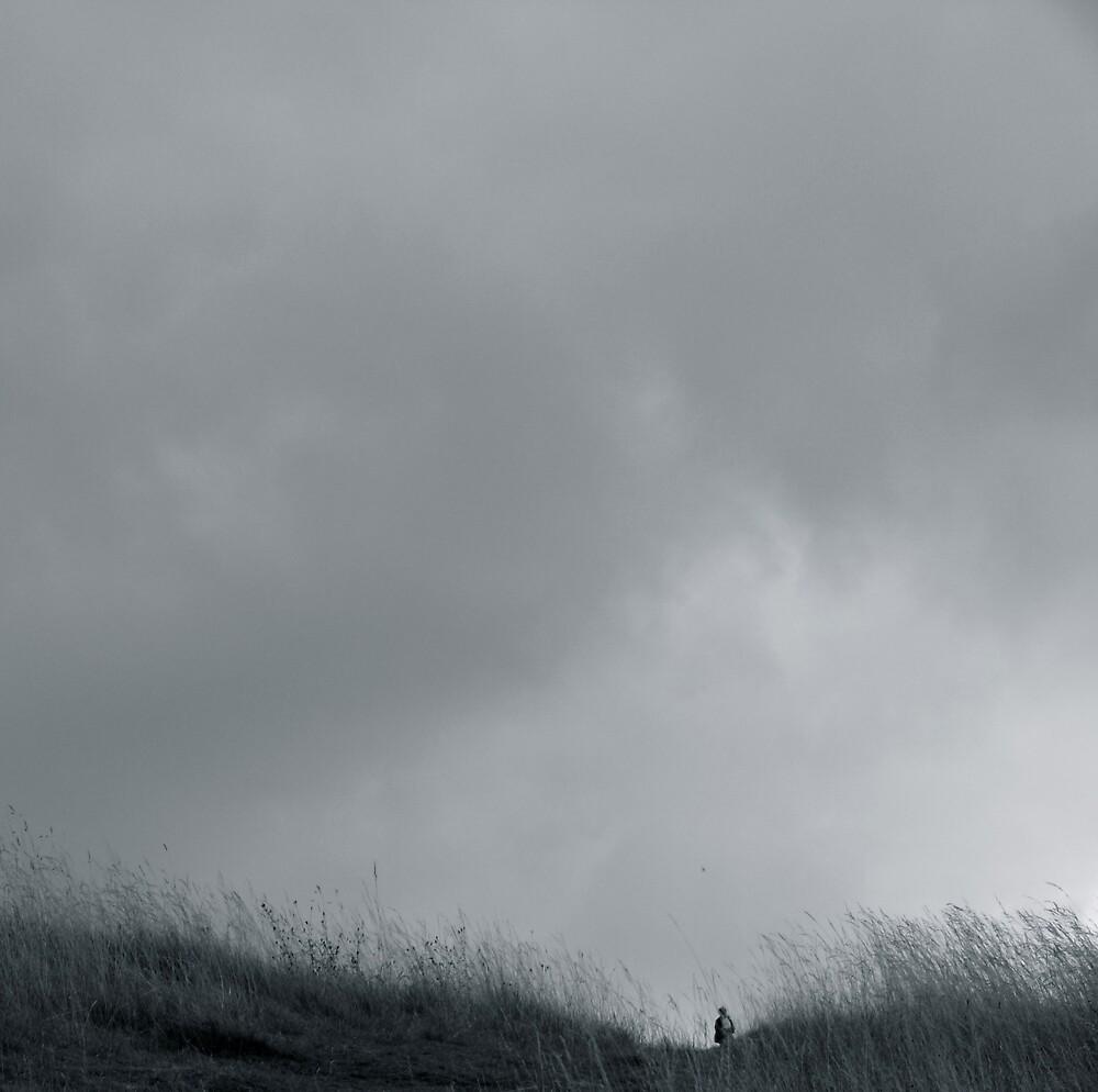 Gulliver, Box Hill by tartalom