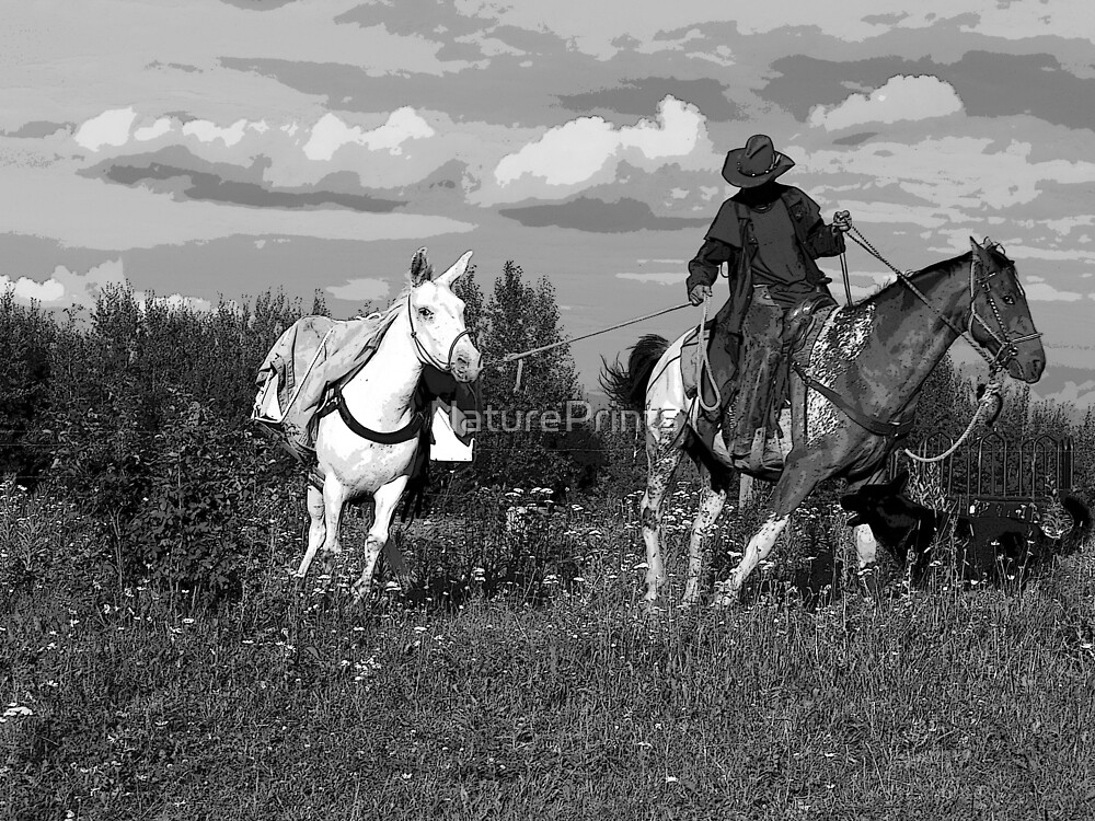 """""""Caribou Cowboy"""" by NaturePrints"""