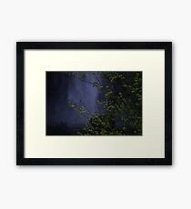 Multnomah Falls, Oregon Framed Print