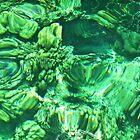 Coral Reef by Margaret Stevens