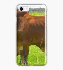 Big and Bulky Bull iPhone Case/Skin