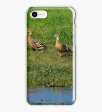 Spoonbill and Whistling Ducks iPhone Case/Skin