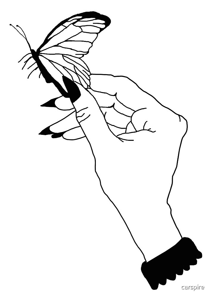 Tumblr Butterfly Line Drawing By Carspire Redbubble