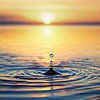Dawn Drop by Oceansoul  Photografix - Susie Thomspon