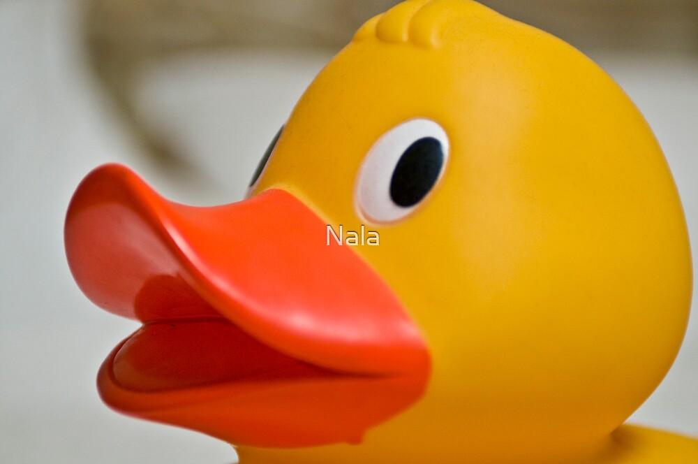 Does my beak look big in this  by Nala