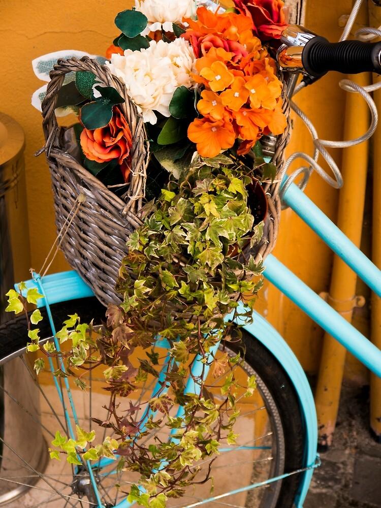 Basket Full of Flowers by Rae Tucker