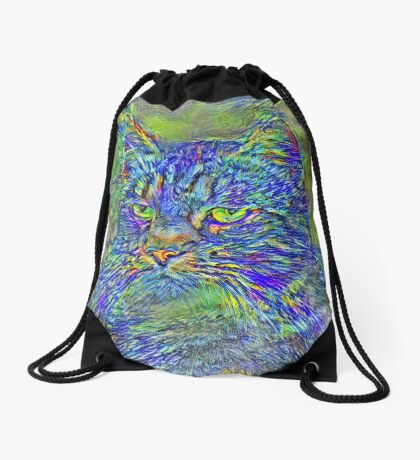Artificial neural style Post-Impressionism cat Drawstring Bag