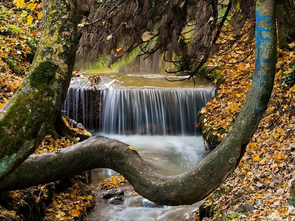 Autumn Waterfall in Brasov by Rae Tucker