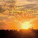 FLAMING SUNSET by ZannaLea