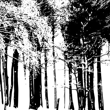 Trees Silhouette by lucredesign