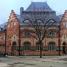 Downtown Uppsala by Barry W  King
