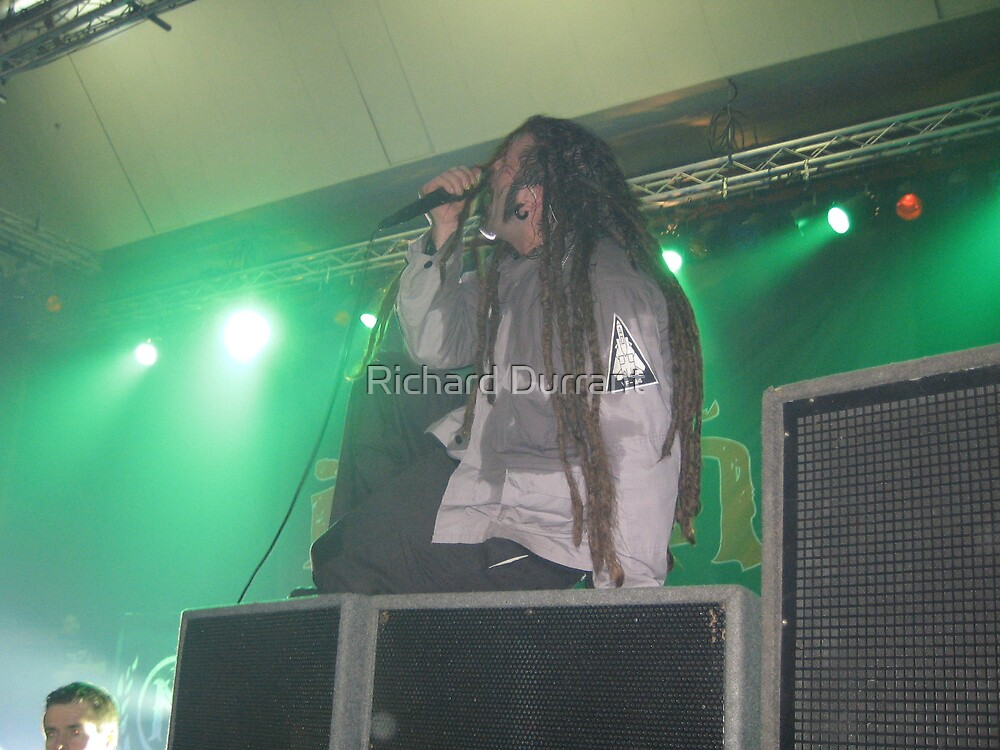 Ill Nino Live In Conert 3 by Richard Durrant
