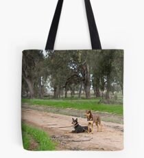 Two Young Kelpie's ....... Tote Bag