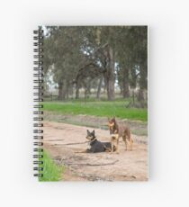 Two Young Kelpie's ....... Spiral Notebook