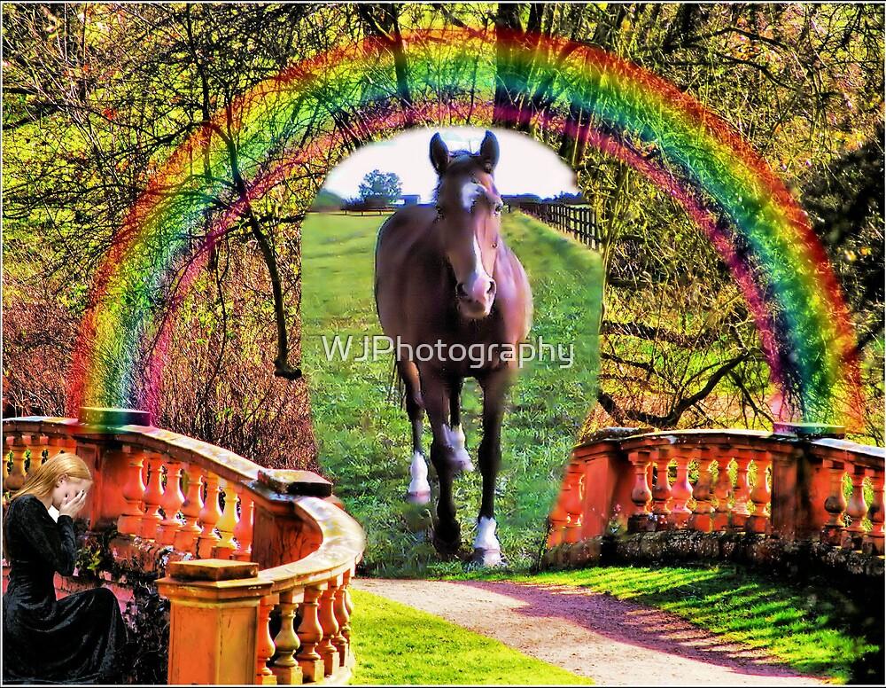 Rainbow Bridge by WJPhotography