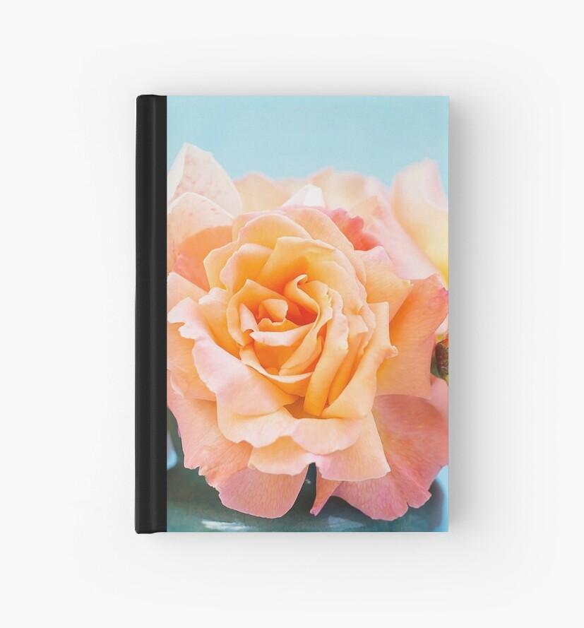 Pretty Peach Roses by vickylewisphoto