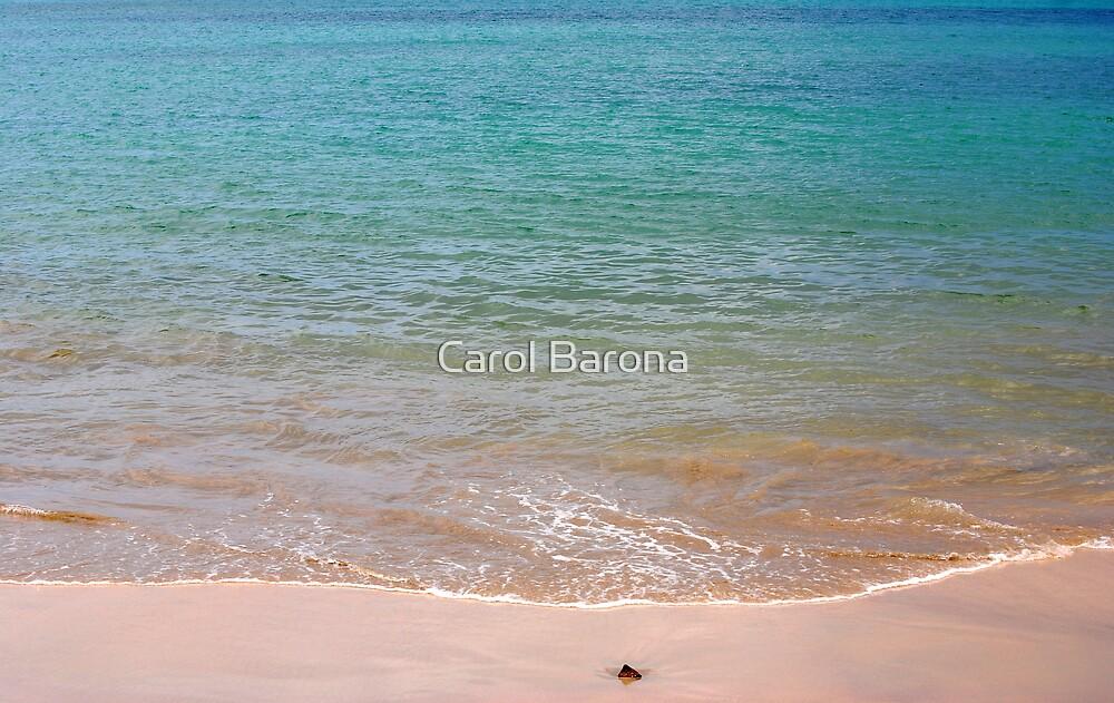 Washed Ashore by Carol Barona