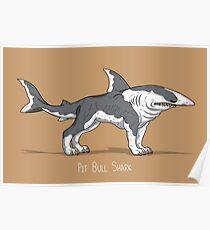 Pit Bull Shark Poster