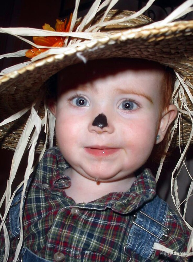 Cute Scarecrow by Pam Barry